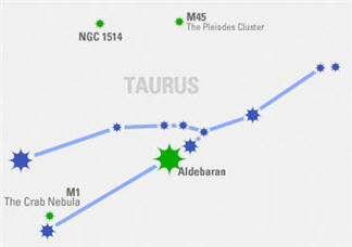 Constellation In Focus: Taurus
