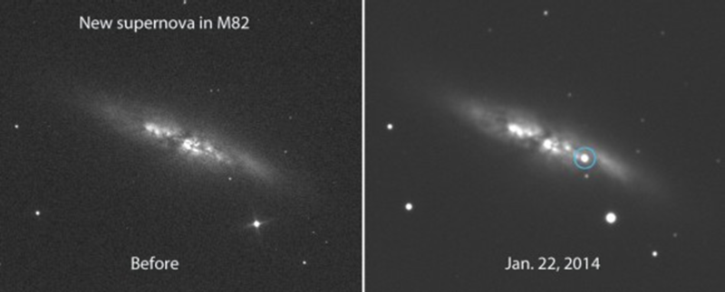 The new supernova: E. Guido, N. Howes, M. Nicolini.