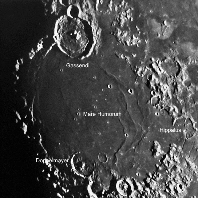 Gassendi and Doppelmayer, to the North and South of Mare humorum, respectively.