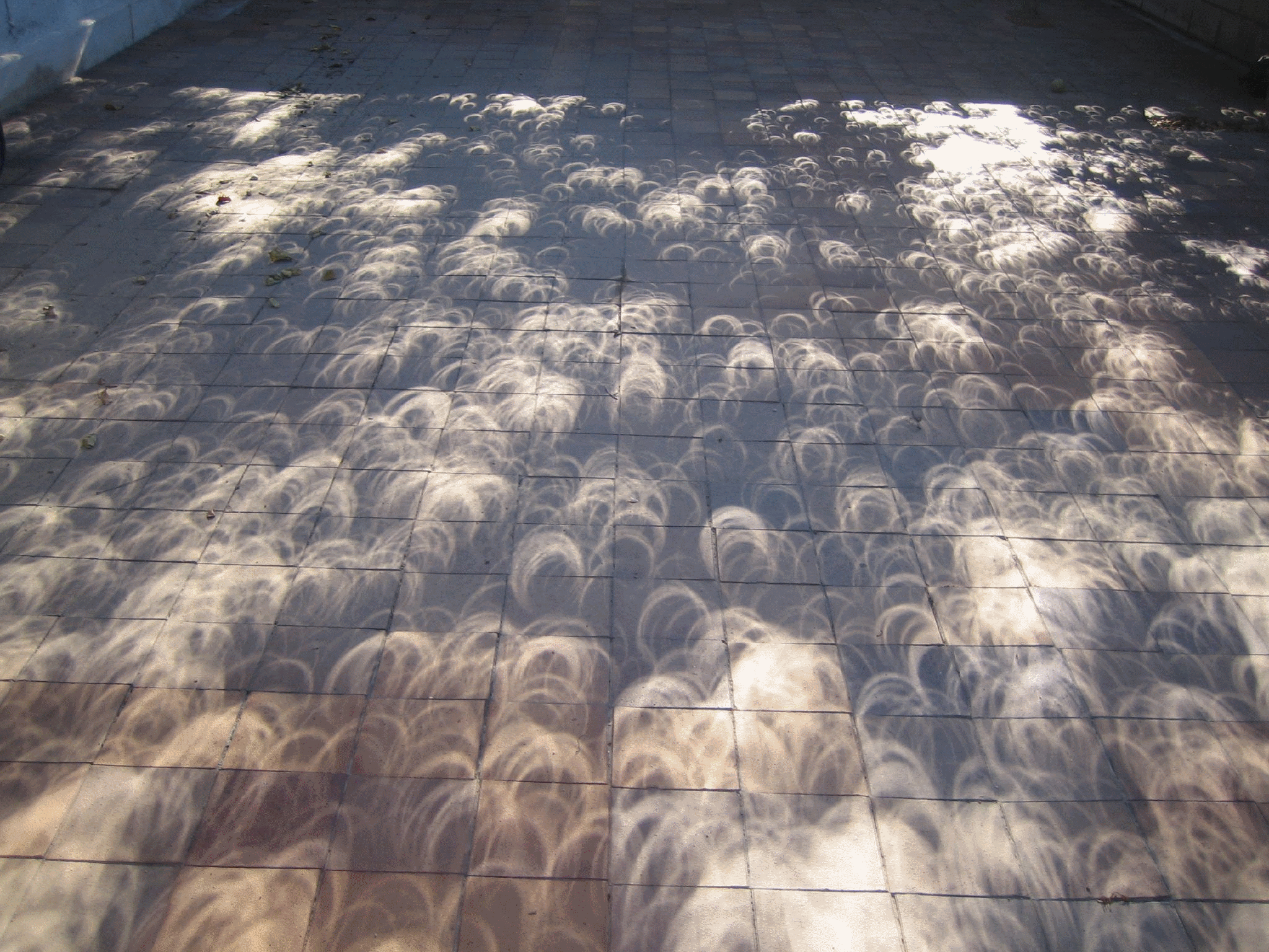 Shadows of an annular eclipse of October 3, 2005. By Nils van der Burg of Madrid, Spain. Via Wikimedia Commons.