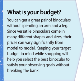 What is your budget?
